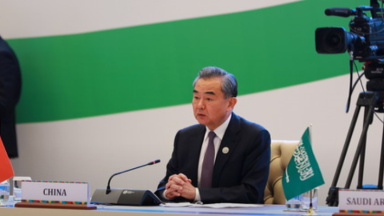 Wang Yi: China ready to forge closer partnership on Central, South Asian connectivity
